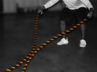 VTX TRAINING ROPES - 50ft